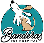 Vet In Rancho Santa Margarita | Banderas Pet Hospital Logo