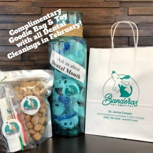 Complimentary pet goodie-bag for all dental cleanings during the month of February!